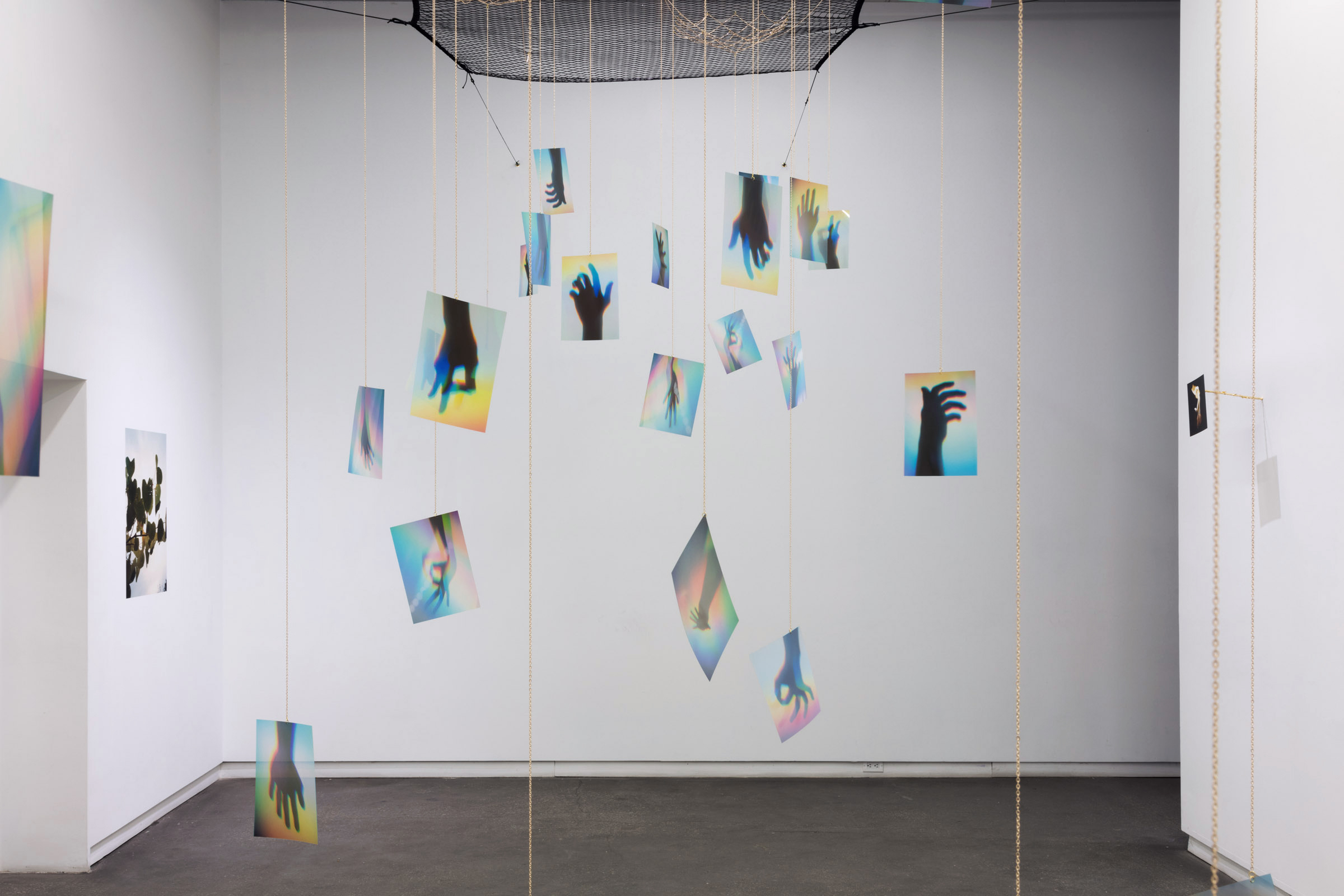 Installation view: Steven Beckly at Daniel Faria Gallery, 2020<br>Photo credit: Laura Findlay