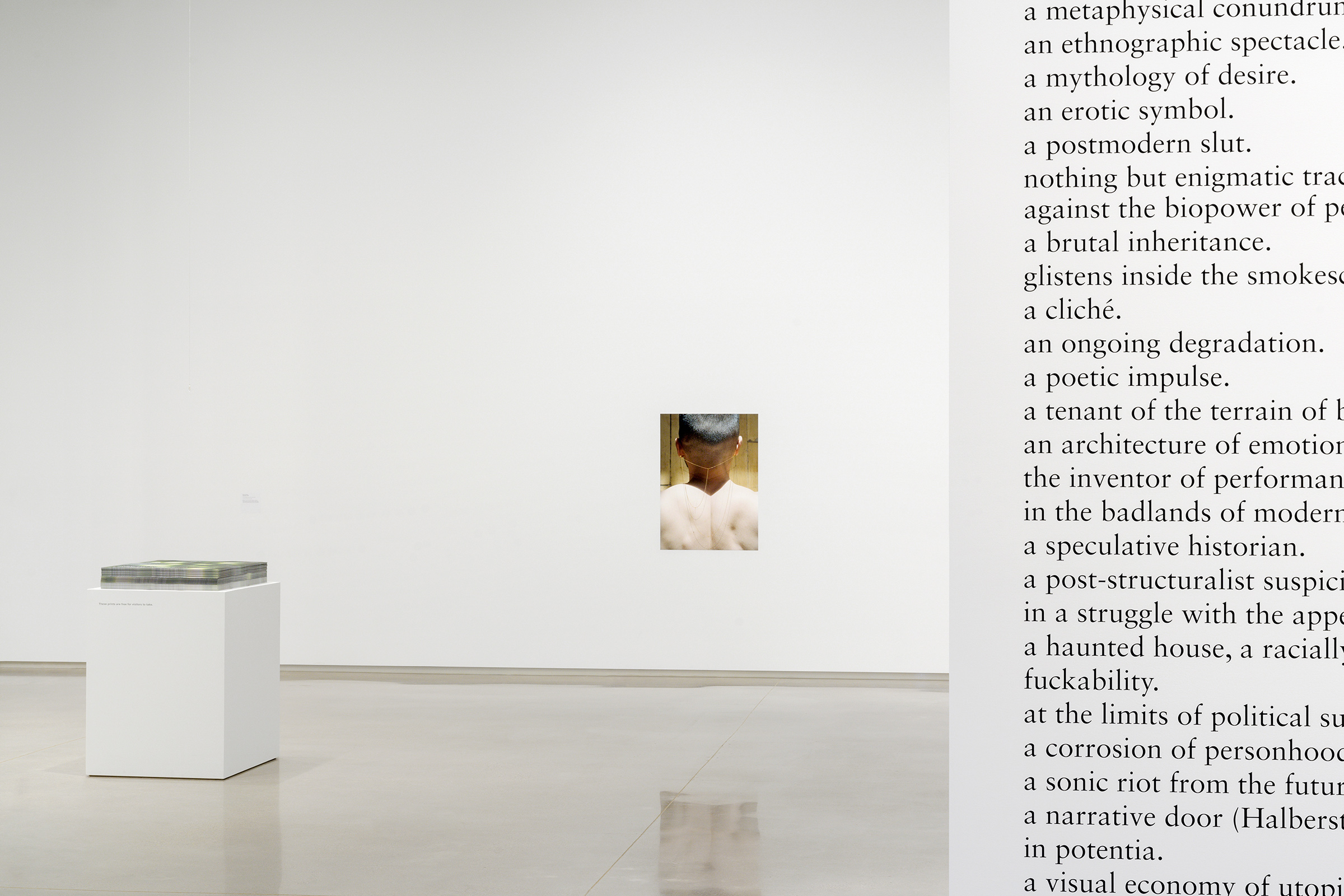 Installation view: <i>If I have a body</i> at Remai Modern, 2019<br>Photo credit: Blaine Campbell
