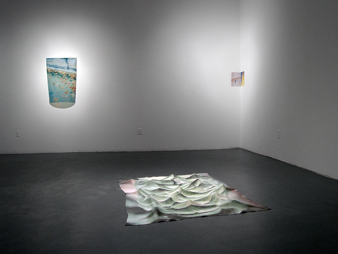 Installation view: Steven Beckly at Eastern Edge Gallery, 2017